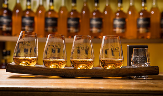 Irish Whiskey Museum Premium Tour